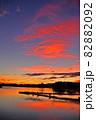 瓢湖の夏 82882092