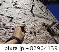 【マダガスカル】棒をつたってバオバブの木を登る女性の手(アンダバドアカ) 82904139