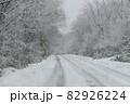 森の中の吹雪の雪道 82926224