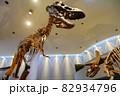 恐竜 ティラノサウルスとトリケラトプスの骨格標本 82934796