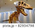 恐竜 ティラノサウルスの骨格標本 82934798
