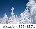 長野県下高井郡山ノ内町にあると冬期横手山渋峠スキー場の山頂の青空と樹氷とアンテナの電波塔の景色 82948371