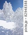 長野県下高井郡山ノ内町にあると冬期横手山渋峠スキー場の青空と樹氷の景色 82948388