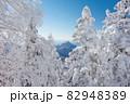 長野県下高井郡山ノ内町にあると冬期横手山渋峠スキー場から観える青空と樹氷と笠ヶ岳と日本アルプスの景色 82948389