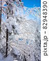 長野県下高井郡山ノ内町にあると冬期横手山渋峠スキー場から観える青空と樹氷の景色 82948390
