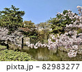 桜まつり (岡崎公園/愛知県岡崎市) 82983277