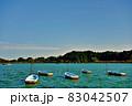 茨城県水戸市 千波湖のボート3−2 83042507