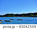 茨城県水戸市 千波湖のボート2−3 83042509