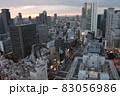 【大阪】梅田第三ビル展望台からの夕焼け 83056986