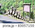 【京都】嵯峨野トロッコ列車とたぬき 83057150