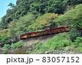 【京都】嵯峨野トロッコ列車と保津川下り 83057152