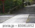 鎮守の森の参道 83061052