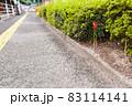 県道55号線の古くなった歩道や植え込み 83114141