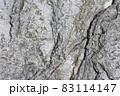 戸崎海岸の岩をクローズアップして写す 83114147