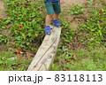 小さな木の橋を渡る子供(3歳児/男の子) 83118113