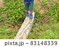 小さな木の橋を渡る子供(3歳児/男の子) 83148339