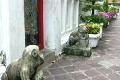ワット・ポー バンコク タイの動画 1449729