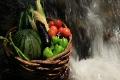 滝壺の飛沫に洗われる籠の野菜(音声あり) 2227329