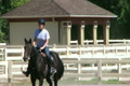 Female Equestrian Student 2613846