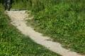 go speed bicycle 3550025