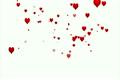 バレンタイン パーティクル ウェディングの動画 3830455