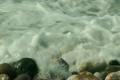 sea shore 5374350