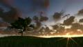 草地 草原 树木 6794370