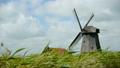 Dutch wind mill with grass landscape 7997705