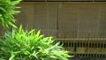 京都祇園の町家 8721395