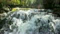 Pure fresh water waterfall in forest 8729409