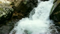 Pure fresh water waterfall in forest 8735484