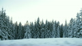 Beautiful winter time surroundings while driving 8999244