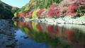 香嵐渓の紅葉 9056693