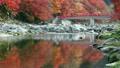 香嵐渓の紅葉 9056714