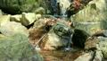 滝・淵 水の流れる音 9424260