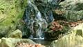 滝・淵 水の流れる音 9424263