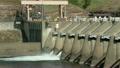 能量 能源 蓄水池 9864767