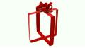 gift 10274625