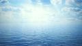 ocean 10274629