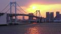 晚景 城市景觀 城市風光 10289153