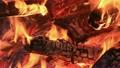 焚き火 炭 火の動画 10488587