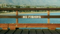 A no fishing sign is painted on the Stearns Wharf Pier in Santa Barbara, California 10664160