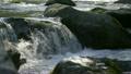 奥多摩 多摩川 清流の動画 10902948