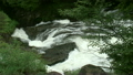 竜頭の滝 11061432