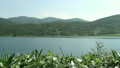 野反湖 ササ 11061433