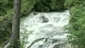 竜頭の滝 11061435
