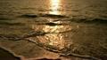 夕陽と波 11071364
