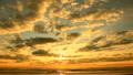 朝焼けの空と浜辺 11116306
