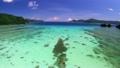 美しい嘉鉄湾の空撮 11452528