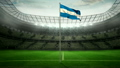 pitch, national, flag 11494581